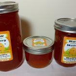 orange blossom honey local huff's honey farm